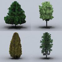 trees small 04
