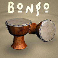 3d bongo drum model