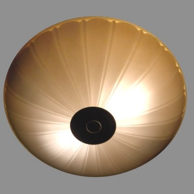 light max