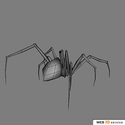 3d model spider arachnid