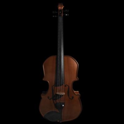 detailled violine c4d