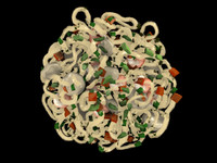 3d fettucine noodles shrimp model