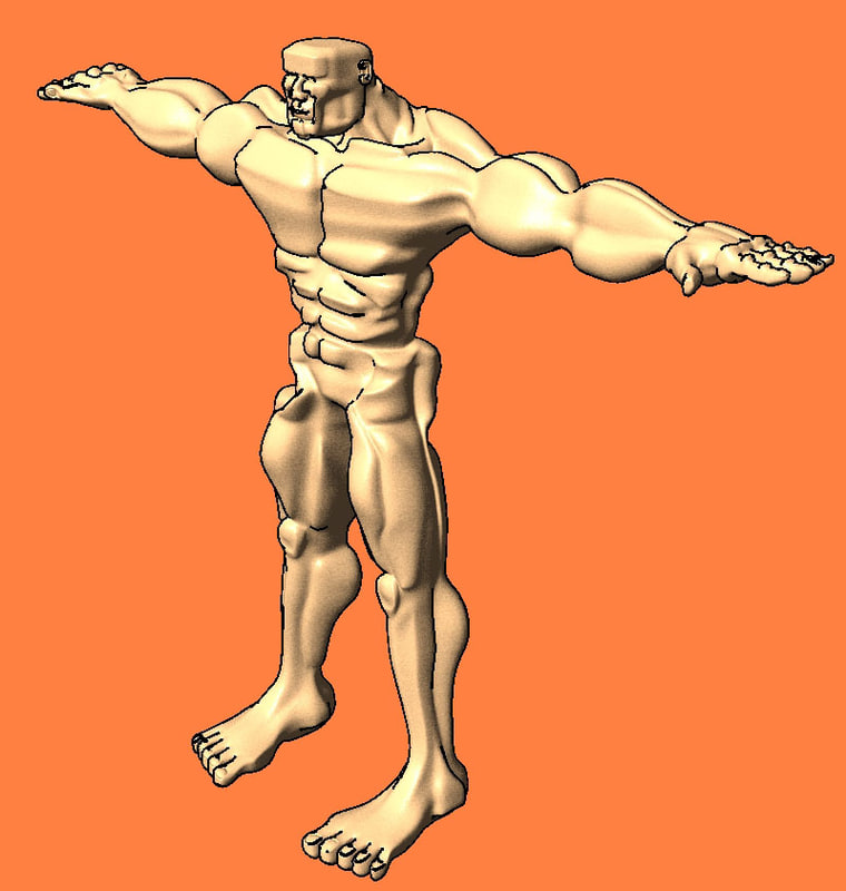 lightwave male anatomy character man