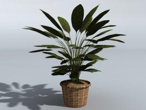 house plant pot 3d model