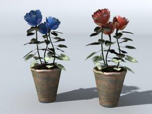 flower pots max