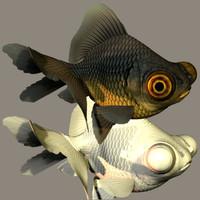 swimming 3d model