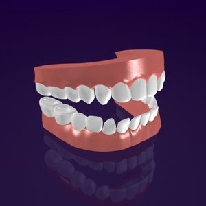 jaw mouth teeth 3d max