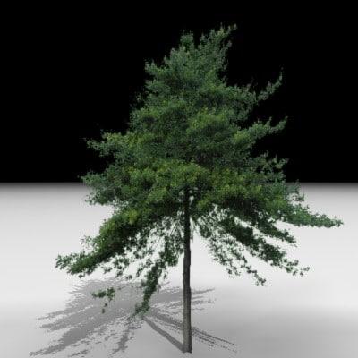 maya tree j3d
