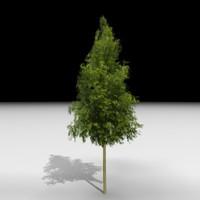 J3D_TREE012.zip