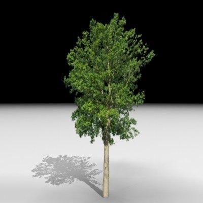 3ds max tree j3d