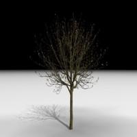3d model tree j3d