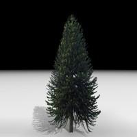max tree j3d