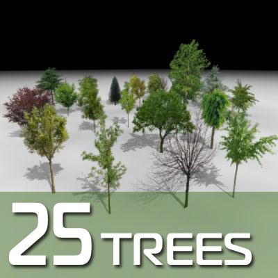 tree plant 3d model