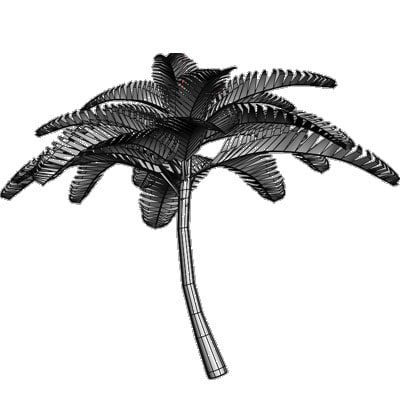 tree plant 3d obj