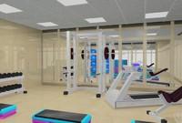 aerobics weight 3d model