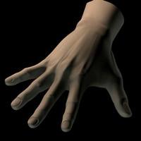 hand.c4d