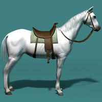 white horse.zip