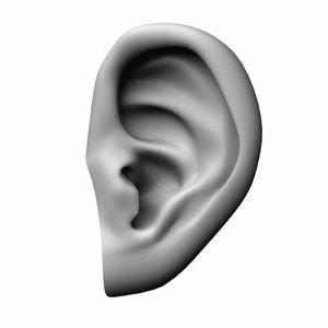 human ear 3ds