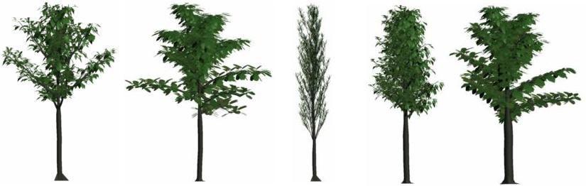 trees bushes 3d model