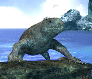 iguana 3d lwo