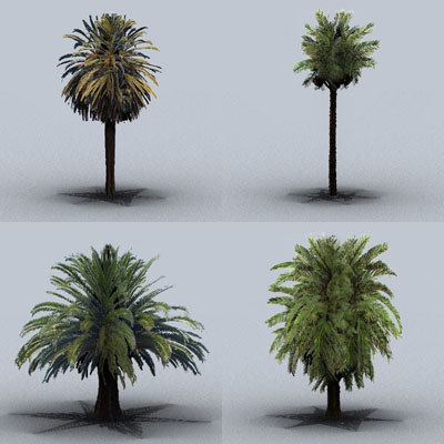 3ds max date palm trees