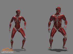 cghumans: adam eve muscles 3d model