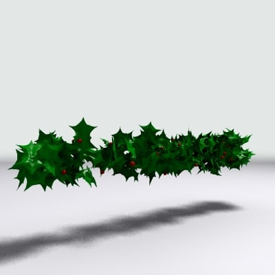 string holly berries max