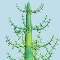 dinosaurs calamites plants 3d model