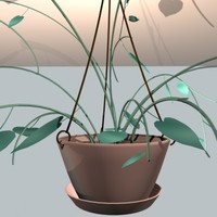 3d hanging plant model