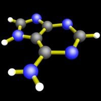 3d model amino acid adenine molecular