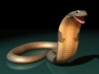 king cobra snakes 3d model