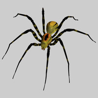 pz3 spider orb pzspdr