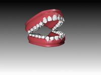 dentures.zip