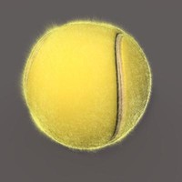 Tennis Ball with Fur