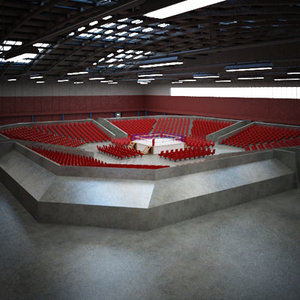 3d boxing arena large model
