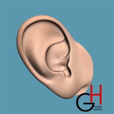 ear realistic max