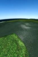 sea max