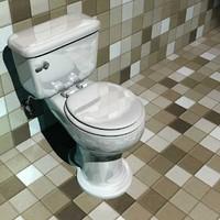 lightwave scale toilet