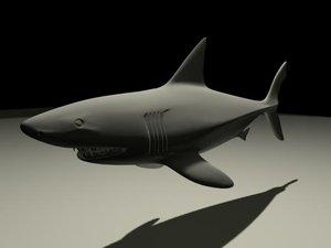 shark ma