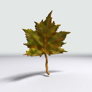 sycamore leaf 3d model