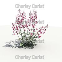 plant parry 3d obj