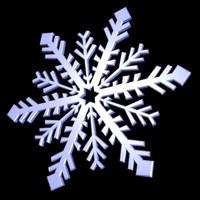 004 snowflake snow 3d model