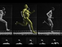 body human 3d model