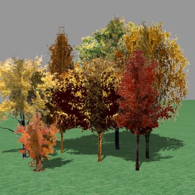 autumn trees 3d model