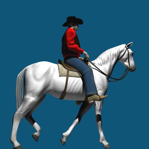 cowboy horse lwo