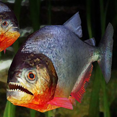 max piranha 01