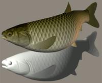 3dsmax grass carp sougyo