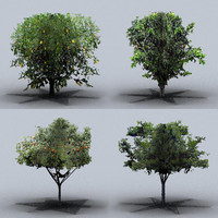 3d fruit trees model