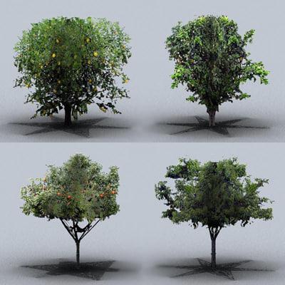 3d fruit trees model