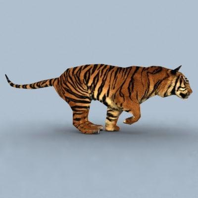 3d max tiger